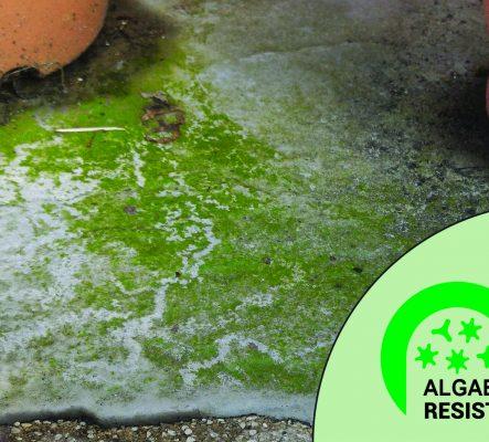 Algae Resist 105x95