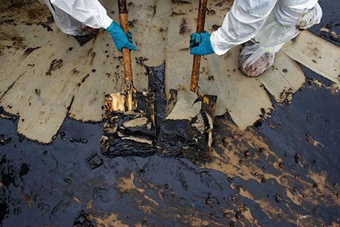 Oil Resist8